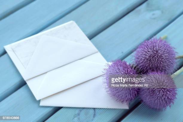 Blank cards with three wildflowers on blue painted wooden background. Directl above and copy space