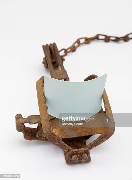 A blank credit card caught in a spring gin trap