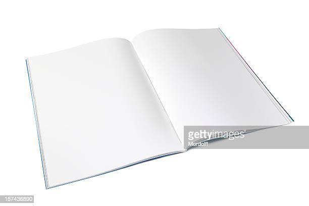 Blank magazine spread on white