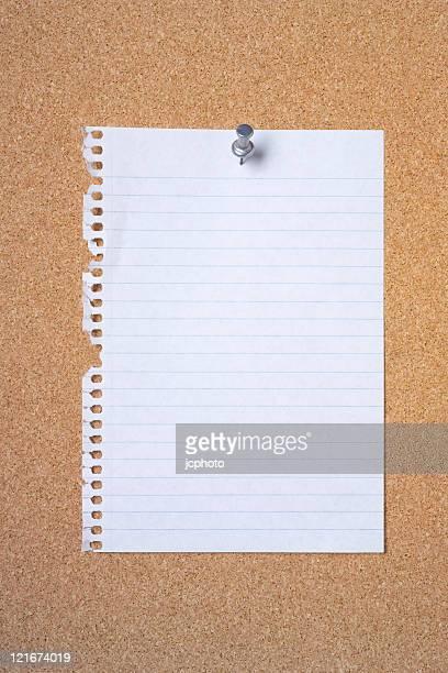 Blank note paper on cork board