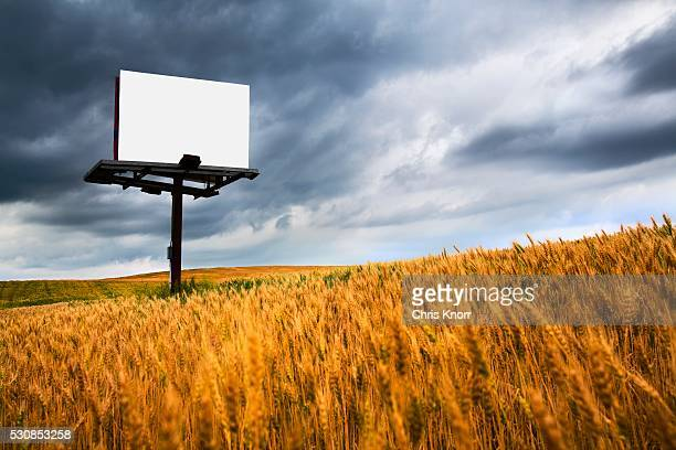 blank sign in a field of wheat, wilmar, minnesota, united states of america - minnesota imagens e fotografias de stock
