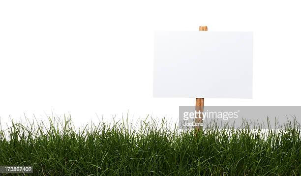 blank sign in the grass - blank sign stock photos and pictures