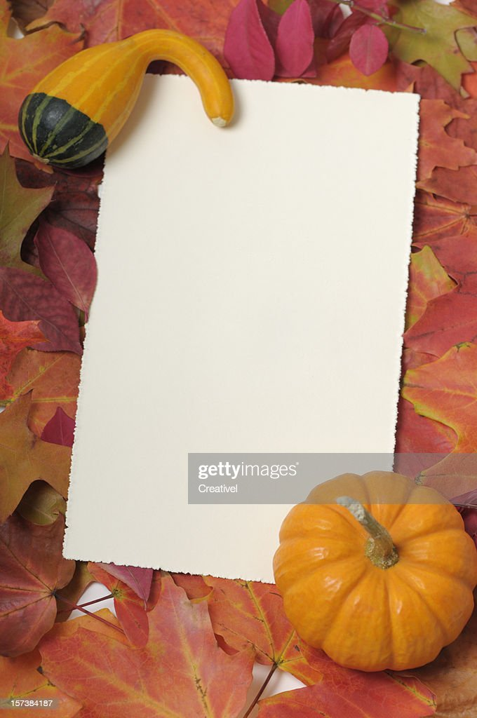 Blank thanksgiving card  framed by colorful leaves and small pumpkin : Stock Photo