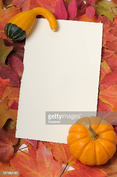 blank thanksgiving card  framed by colorful leaves and small pumpkin - happy thanksgiving card stock pictures, royalty-free photos & images