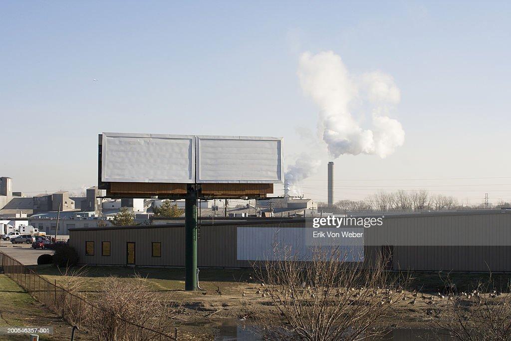 Blank white billboards by roadside above flock of geese : Stock-Foto