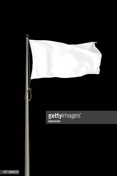 blank white flag - flag stock pictures, royalty-free photos & images