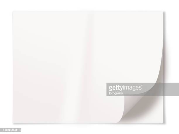 blank white paper sheet on white background - curled up stock pictures, royalty-free photos & images