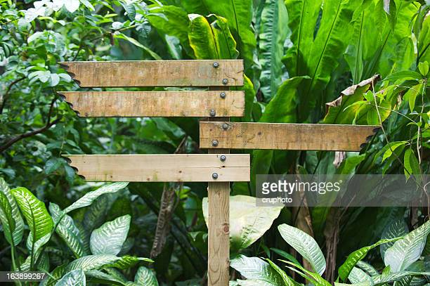 Blank wooden signpost in a nature with copyspace