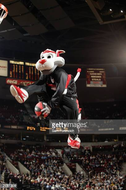 Blaze the mascot of the Portland Trail Blazers leaps in the air during a break in the game against the Atlanta Hawks at the Rose Garden on November 8...