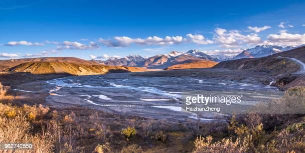 blazing yellow fall autumn color tress denali mountain range - national landmark stock pictures, royalty-free photos & images