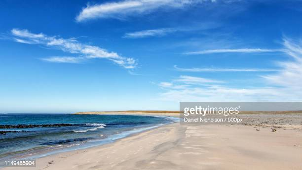 bleaker island - wispy stock photos and pictures