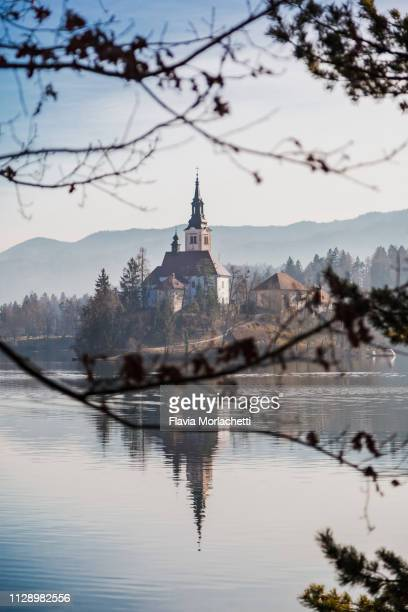 bled island on lake bled with distinctive church of mary's assumption - bledsjön bildbanksfoton och bilder