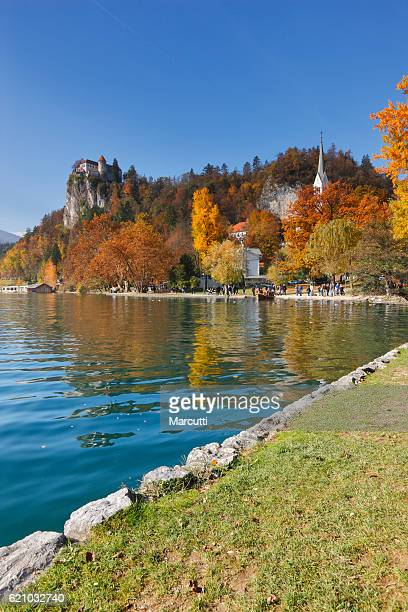 bled lake - julian california stock photos and pictures