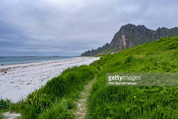 bleik beach on andoya in northern norway - finn bjurvoll ストックフォトと画像