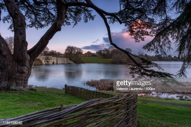 blenheim palace - oxfordshire stock pictures, royalty-free photos & images
