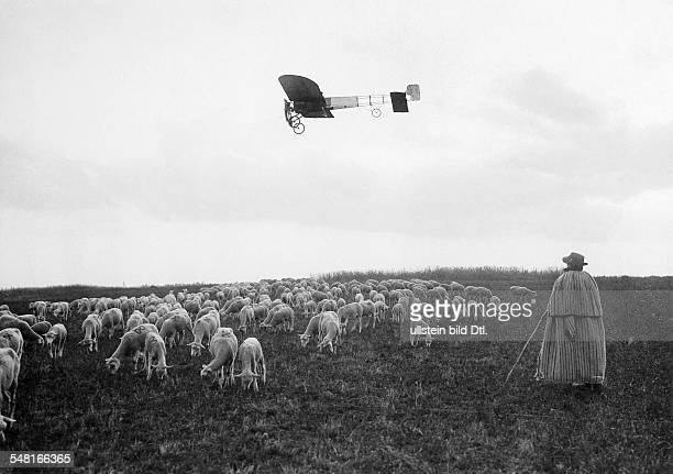 Bleriot Louis Engineer Aviator F *01071872 Orleans Bleriot during a flight in his monoplane Bleriot XI benaeth him a herd of sheep ca 1909...