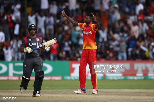 Blessing Muzarabani of Zimbabwe celebrates the wicket of Ahmed Raza of the UAE during The ICC Cricket World Cup Qualifier between the UAE and...