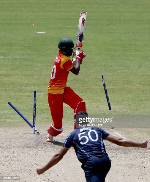 Blessing Muzarabani of Zimbabwe is bowled out by Safyaan Sharif of Scotland during the ICC Cricket World Cup Qualifier between Zimbabwe and Scotland...