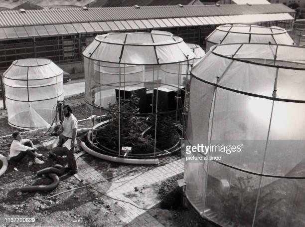 Blick auf die im Bau befindlichen Versuchskammern aufgenommen am 19 August 1983 Studenten der Universität StuttgartHohenheim sind den Ursachen des...