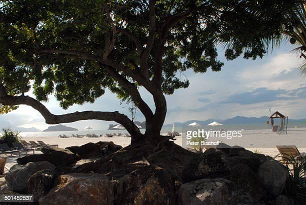 Blick auf Hotelstrand Strand 5SterneLuxushotel Four Seasons Insel Langkawi Malaysia Asien Meer Sonnenliege mit Sonnenschirm Hotel Reise NB DIG PNr...