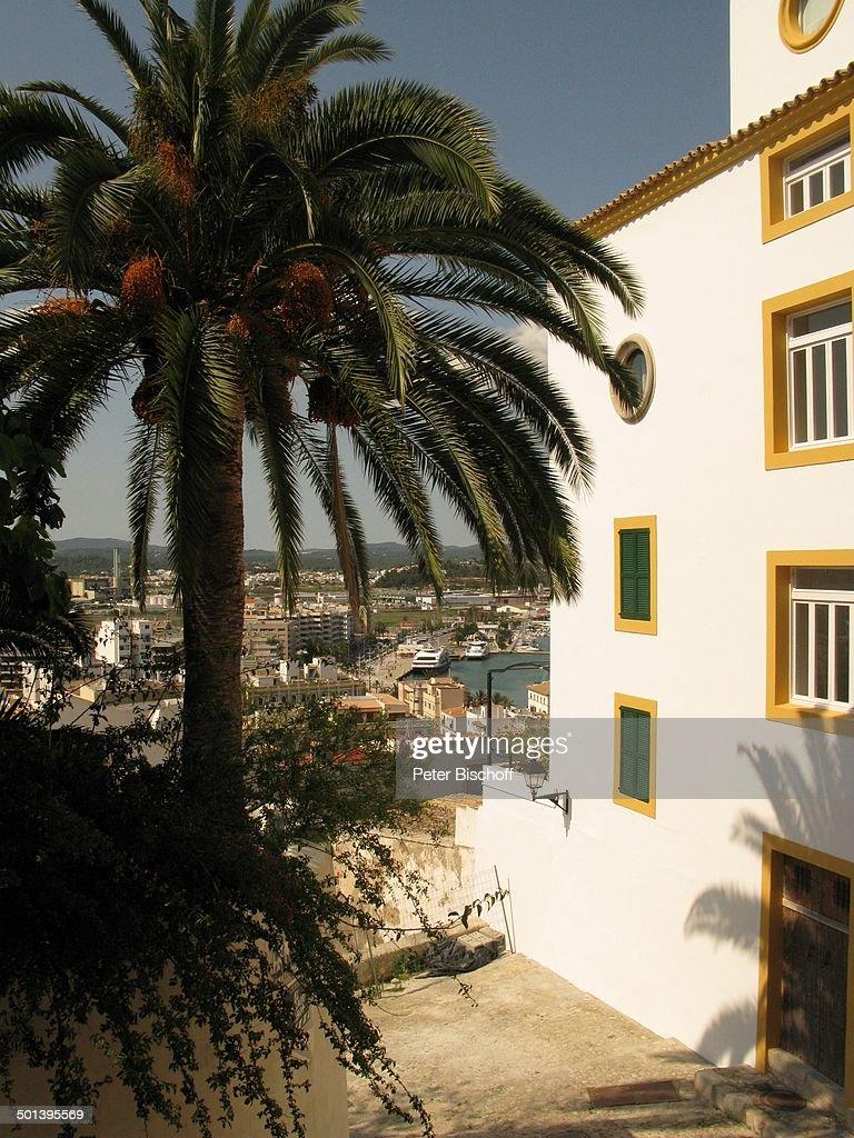 Blick auf Ibiza-Stadt, Insel Ibiza, Balearen, Spanien, Europa, Reise, Kokos-Palme, AS, DIG; P.-Nr.: 663/2010, 16.05.2010; Foto: P.Bischoff; Jegliche F : News Photo