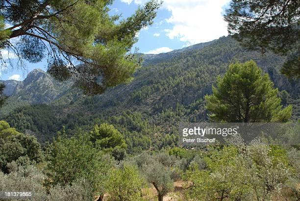 "Blick vom Aussichtspunkt ""Mirador des Pujol dEn Banya"", Insel Mallorca, Balearen, Spanien, Europa, Reise,"