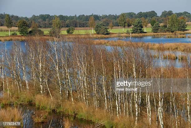 Blick vom Aussichtsturm auf Huvenhoopssee , Naturschutzgebiet Huvenhoopsmoor, Landkreis Rotenburg / Wümme, Niedersachsen, Deutschland, Europa, Moor,...