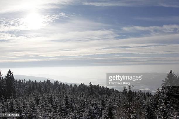 Blick Vom Waldwipfelweg Im Bayerischen Wald