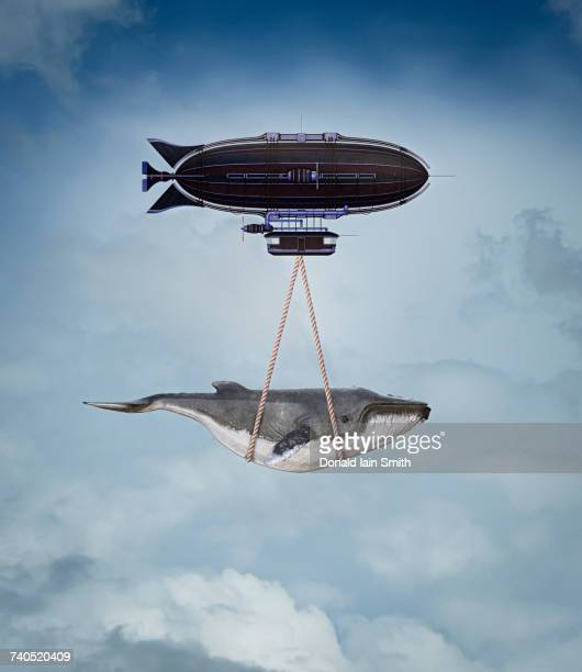 Blimp carrying whale in sky
