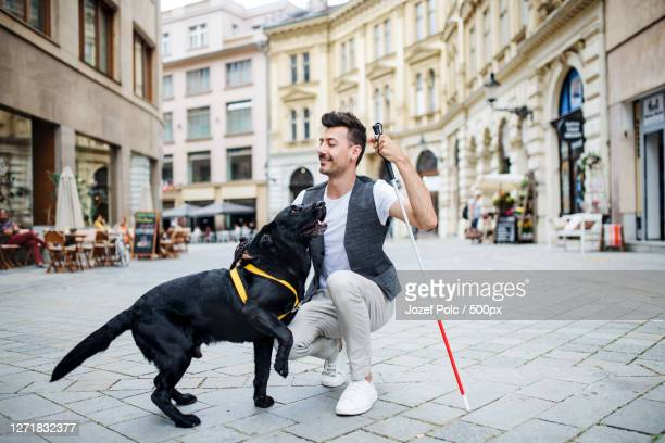 blind man with white cane and guide dog on pedestrian zone in city - 盲導犬 ストックフォトと画像