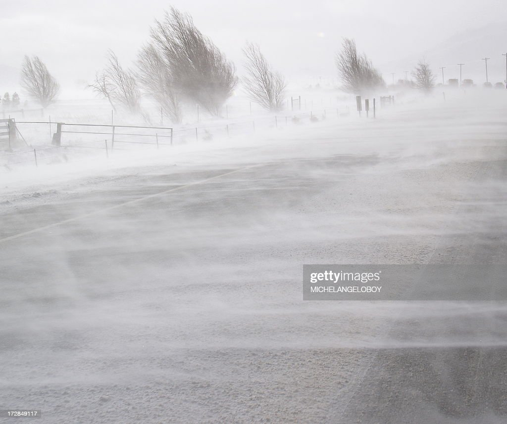 Blinding Snow : Stock Photo