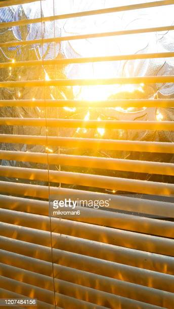 blinds silhouette with sun ray - touching stock pictures, royalty-free photos & images