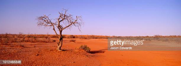 - outback stock pictures, royalty-free photos & images