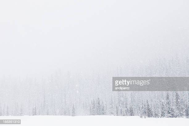 Blizzard on Mt. Hood