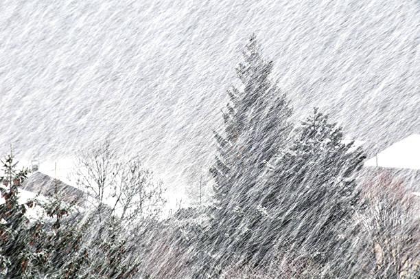 Snowstorm Michigan
