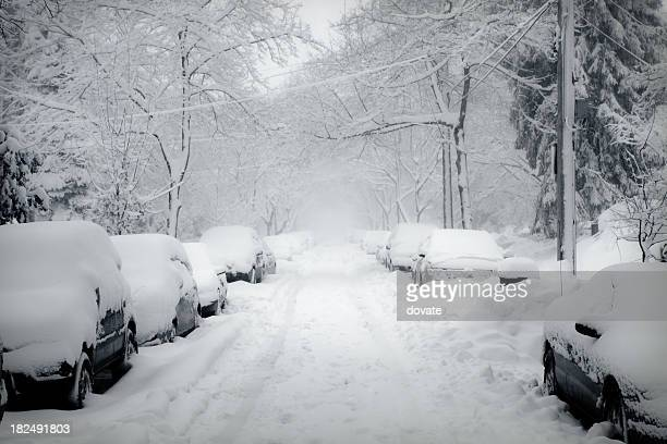 blizzard - winter weather stock photos and pictures