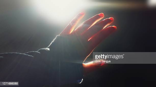 blocking sunrays coming through the window. - sunbeam stock pictures, royalty-free photos & images