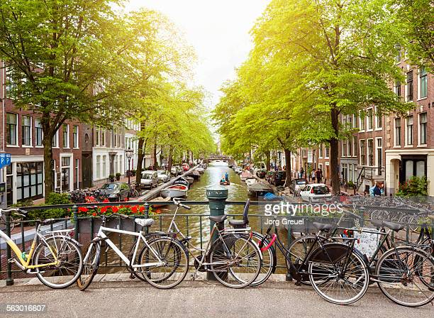 bloemgracht - amsterdam stock pictures, royalty-free photos & images