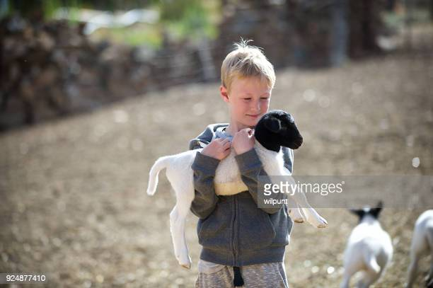 Blond Boy Holding and Hugging Lamb