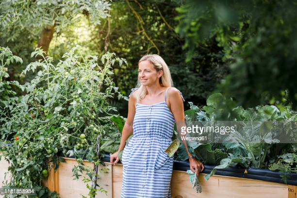 blond woman standing in front of her raised bed in her own garden - striped dress stock pictures, royalty-free photos & images