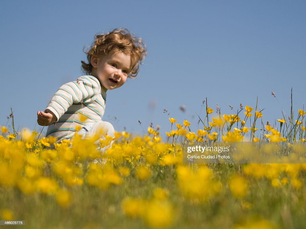 Blonde Baby In A Field Of Yellow Flowers Stock Photo | Getty Images