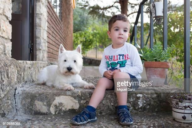 Blonde boy, 3-4 years, sitting with his westie puppy