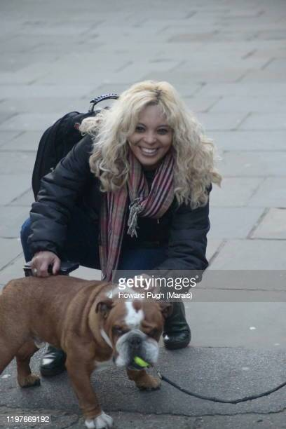 blonde bulldog - howard pugh stock pictures, royalty-free photos & images