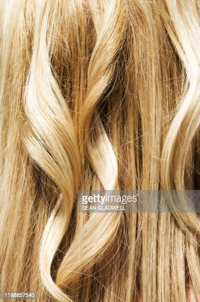 blonde hair - highlights hair stock pictures, royalty-free photos & images