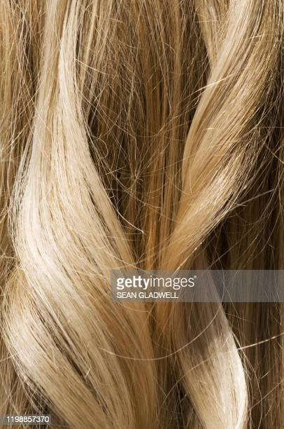 blonde wavy hair - shiny stock pictures, royalty-free photos & images