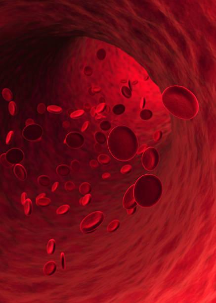 Blood Cells (XXXL) Wall Art