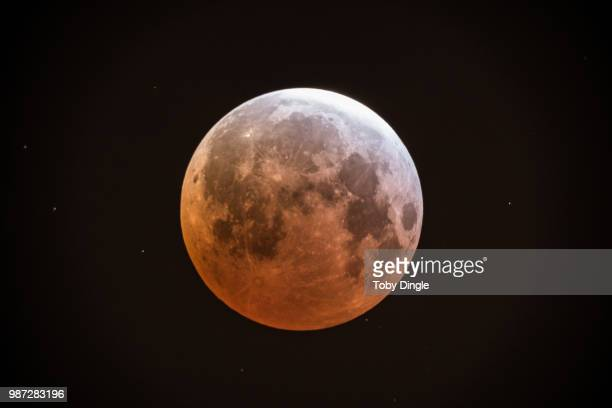 blood moon morning - lunar eclipse stock pictures, royalty-free photos & images