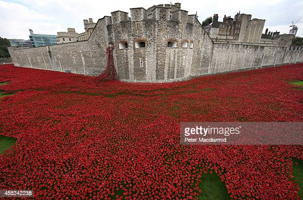 Blood Swept Lands and Seas of Red' by artist Paul Cummins, made up of 888,246 ceramic poppies fills the moat of the Tower of London, to commemorate...