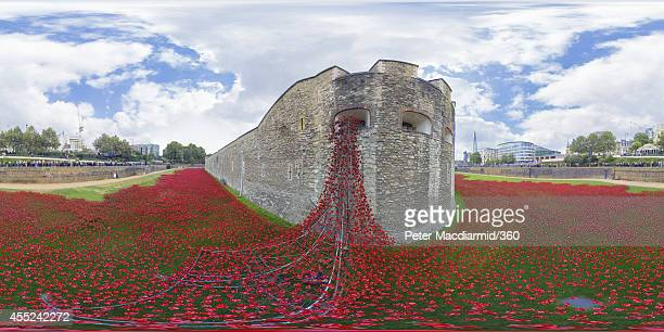 'Blood Swept Lands and Seas of Red' by artist Paul Cummins made up of 888246 ceramic poppies fills the moat of the Tower of London to commemorate the...