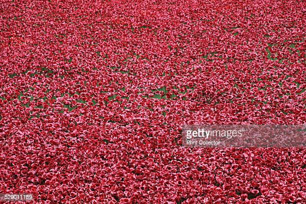 'Blood Swept Lands and Seas of Red', Tower of London, 2014. The installation marks one hundred years since the first full day of Britain's...
